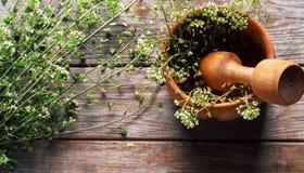 Capsella plant Royalty Free Stock Photo