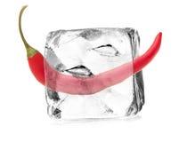 Capsico in cubetto di ghiaccio Immagine Stock