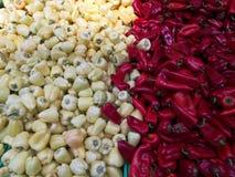 Capsicum и красное kapia стоковая фотография