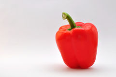 Capsicum. In a soft box royalty free stock photos