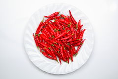 Capsicum Royalty Free Stock Images