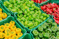 Capsicum Stock Photo