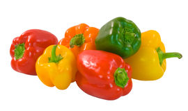Capsicum. Selection of brightly colored capsicum on white background royalty free stock photo