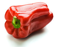 Capsicum. A whole red capsicum. Isolated on white stock photos