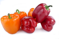 Capsicum annuum cultivars Royalty Free Stock Images