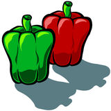 Capsicum Bi Color Royalty Free Stock Photography