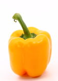 Capsicum. S on the white background Royalty Free Stock Images