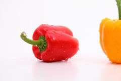 Capsicum. S on the white background Royalty Free Stock Photography