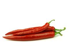 capsicum chili pieprzy czerwień Obraz Royalty Free