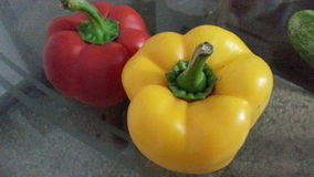 Capsicum stock photography