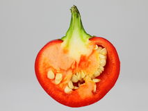 Bell pepper cross-section Royalty Free Stock Photography