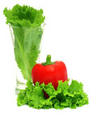 Capsicum with fresh lettuce. In a glass over white background stock photos