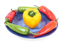 Capsicum i chillies Obraz Stock