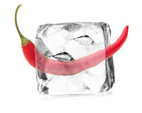 Capsicum in ice cube Stock Image