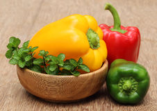 Capsicum with mint leaves on a bowl Royalty Free Stock Photo