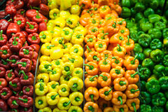 Capsicum stocked to the brim Stock Photos