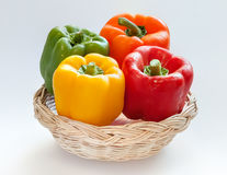 Capsicum or sweet pepper on white background. 4 colors capsicum or sweet pepper in a basket on white background Royalty Free Stock Photography