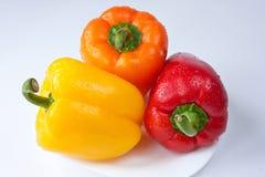 Capsicum. sweet peppers Stock Image