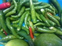 Capsicum tła zielona plama Fotografia Stock