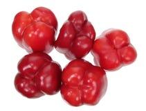 Capsicums rossi Immagine Stock Libera da Diritti