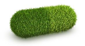 Capsula della pillola dell'erba verde Fotografia Stock