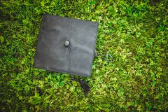 Capsule al graduado, mintiendo en el césped, hierba verde, puede ser utilizado para el anuncio Imagen de archivo