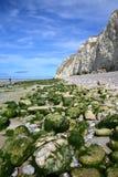 Capsule Blanc Nez, ` Opale, Pas-de-Calais, Francia de Cote d: La playa durante la bajamar Fotos de archivo