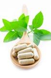 Capsule della medicina di erbe in cucchiaio di legno Fotografie Stock Libere da Diritti