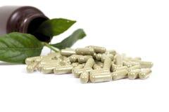 Capsule della medicina di erbe su fondo bianco Fotografia Stock