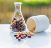 Capsule dietetiche di supplemento Fotografia Stock