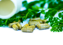 Capsule of herb Royalty Free Stock Photo