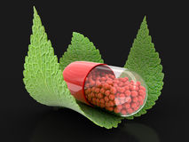 Capsule and leaves Stock Photos