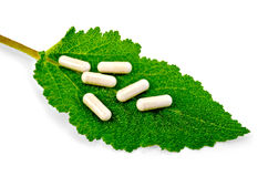 Capsules beige on green leaf sage Royalty Free Stock Photography