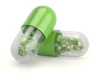 Capsules médicales avec les usines de fines herbes Image libre de droits