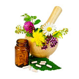 Capsules with mortar and herbs Stock Photography