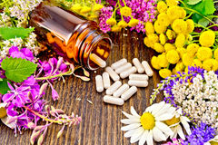 Capsules in open brown jar on dark board. Capsules in a brown jar and on the table, fresh flowers of fireweed, tansy, chamomile, clover, yarrow, meadowsweet Royalty Free Stock Image