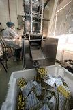 Capsules in packaging process. St. Petersburg, Russia - December 6, 2016: chemical and biological association with the Academy of Sciences for the production of stock photo