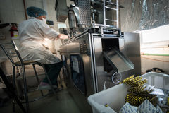 Capsules in packaging process. St. Petersburg, Russia - December 6, 2016: chemical and biological association with the Academy of Sciences for the production of royalty free stock photography