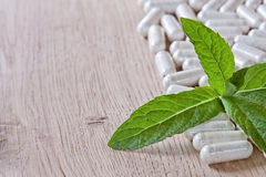 Capsules and a sprig of mint Royalty Free Stock Photo