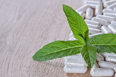 Capsules and a sprig of mint Royalty Free Stock Image