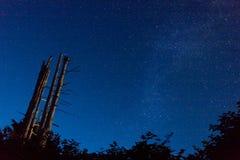 Captação da noite Fotografia de Stock