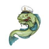 Captain Catfish Tattoo. Tattoo style illustration of a Captain Catfish wearing hat cap on isolated white background Royalty Free Stock Images
