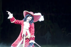 Captain Hook's Close Up Royalty Free Stock Images