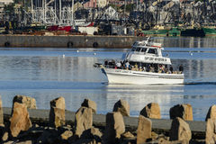 Captain Leroy`s Deep Sea Fishing party boat. New Bedford, Massachusetts, USA - June 8, 2017: Captain Leroy`s Deep Sea Fishing party boat against New Bedford Stock Image