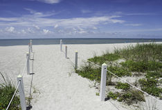 Captiva in the Summer Royalty Free Stock Photography