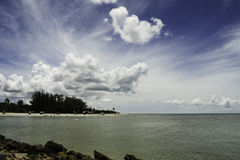 Captiva in the Summer Royalty Free Stock Image