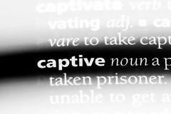 Captive. Word in a dictionary.  concept royalty free stock photo