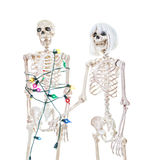 Captive Christmas Skeleton Royalty Free Stock Photos