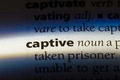 Captive. Word in a dictionary.  concept stock image