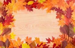 Capítulo de las hojas de otoño en una superficie de madera Foto de archivo